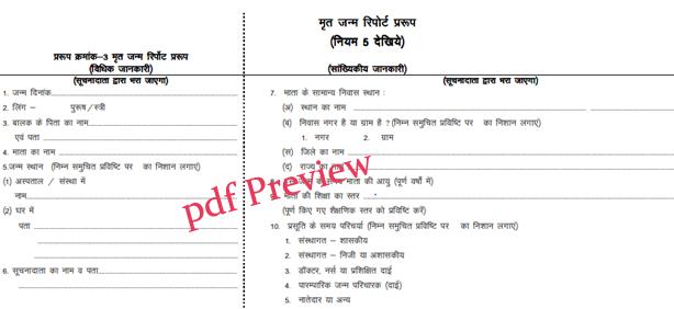 Death Certificate Form MP