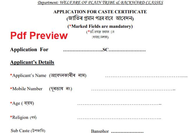 Assam Caste Certificate Application Form